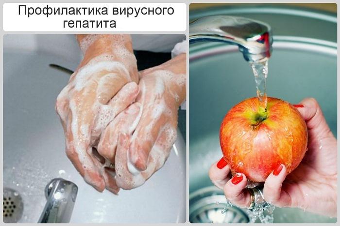профилактика гепатита а