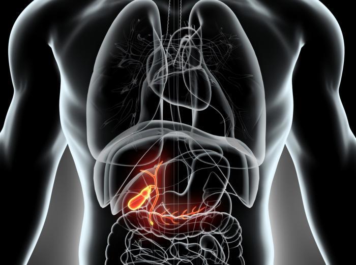 Первичный билиарный цирроз