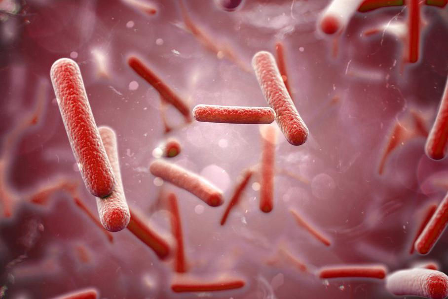 Бактериальная пневмония - причины, симптомы, лечение, осложнения